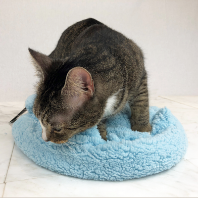 BlanCat Лежанка для кошек